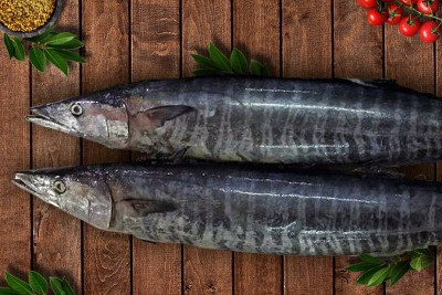 Spanish Seer Fish (Large) - Whole