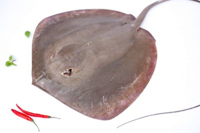 Freshwater Stingray / Thirandi (Will have strong smell, read description) - Whole