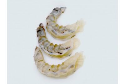 Tiger Prawn / Bagda Chingri - Peeled & Deveined (PD) Meat