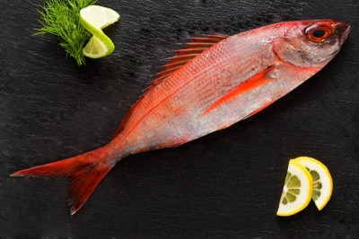 Tropical Snapper - Whole