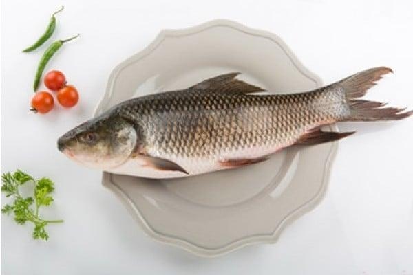 FreshToHome Home - Buy Fresh Fish, Chicken and Mutton Online
