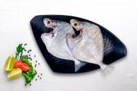 Buy Fresh Fish, Chicken and Mutton Online