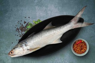 Indian Salmon / Vazhmeen / Raavas / Rawas / Gurjali/ গুরজালি (Large) : Buy  online | freshtohome.com