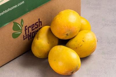 Mango Alphonso (IN) (raw/semi-ripe) / مانجو الفونسو هندية