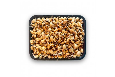 Black Eyed Sprout (AE) -Pack of 200g