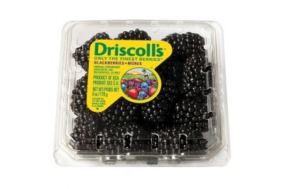 Blackberries Driscolls - Pack of 170g / توت أسود