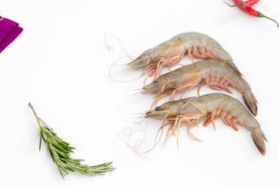 Premium Wild Caught Prawn / Kazhanthan / Jhinga (Large) - Whole