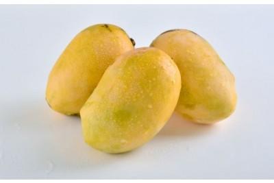 Mango Long (KE)