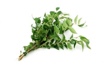 Curry Leaf - 1 Bunch