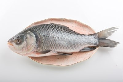 Catla (2kg to 3.5kg) - Whole (Not Descaled,Not Cleaned, Not Cut In Pieces)