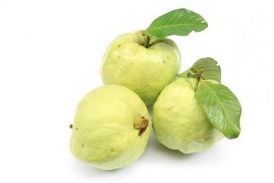 Guava (TH) / جوافة خضراء تايلندية