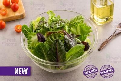 Healthy Salad Mix/ سلطة صحية مشكلة -Pack of 100g
