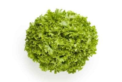Lettuce Gem Heart (ES) - 500g pack