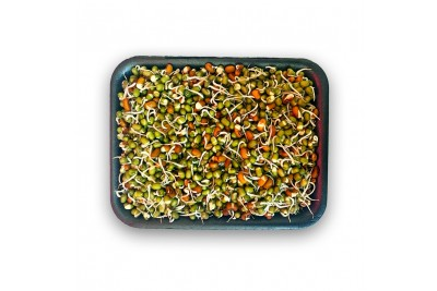 Mixed Sprout (AE) -Pack of 200g