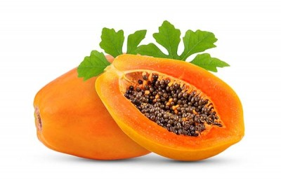 Papaya Holland (TH) / بابايا تايلندية