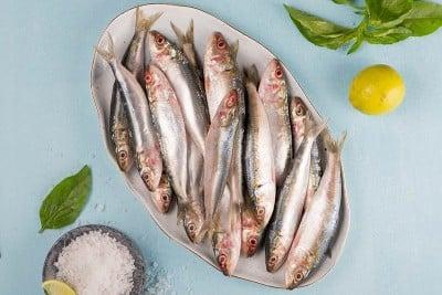 Premium Sardine / Ooma / Mathi (Large)