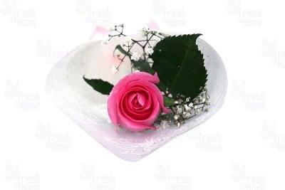 Elegant Single Rose Pink