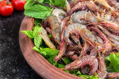 Small n Tasty Cocktail Prawns (300+ Count /kg) - Whole (Not Cleaned, Not Peeled)