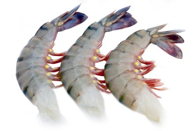 Tiger Prawn Super (Large) - Headless (No Head, Rest with shell, tail)