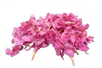 Oleander Flowers/ Pink Arli - (Pack of 200g)